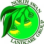 North Swan Logo