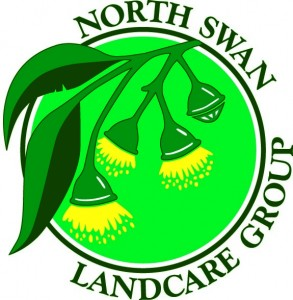 North Swan Logo